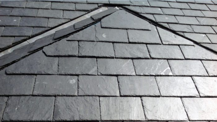 Roof with Rosettas - Calcium Carbonate Markings on Roofing Slate
