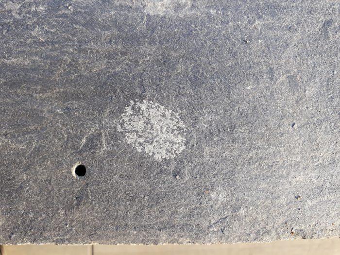 Calcium Carbonate Rosetta close up Markings on Roofing Slates